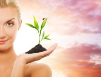 Woman with young plant Stock Image