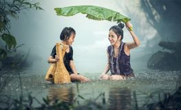 Woman, Young, Rain, Pond Royalty Free Stock Photography