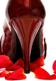 womanish hälsko royaltyfri fotografi