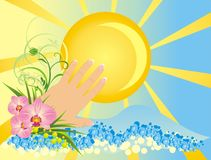 Womanish hand and flowers. Summer composition Royalty Free Stock Images