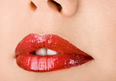Womanish lips Stock Image
