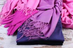 Womanly одежды на осень или зима на старой деревенской деревянной предпосылке Стоковые Изображения
