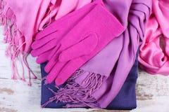 Womanly одежды на осень или зима на старой деревенской деревянной предпосылке Стоковые Фото