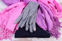 Womanly одежды на осень или зима на старой деревенской деревянной предпосылке Стоковое Изображение