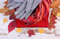 Womanly clothes and autumnal leaves on old rustic wooden background. Womanly clothes and autumnal leaves, gloves shawl sweater, warm clothing for autumn or Stock Photos