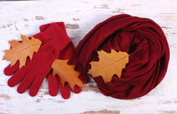 Womanly clothes and autumnal leaves on old rustic wooden background. Womanly clothes and autumnal leaves, gloves shawl, warm clothing for autumn or winter, old Royalty Free Stock Photos