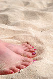 Womanly Feet in White Sand. A woman's pink-pedicured feet buried in a warm beach of white sand Royalty Free Stock Images