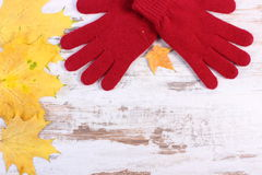 Womanly gloves and autumnal leaves on old rustic wooden background Stock Image