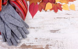 Womanly woolen clothes and autumnal leaves with copy space for text, old rustic wooden background Royalty Free Stock Images