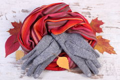 Womanly woolen clothes and autumnal leaves on old rustic wooden background Royalty Free Stock Photo