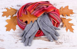 Womanly woolen clothes and autumnal leaves on old rustic wooden background. Womanly woolen clothes and autumnal leaves, gloves shawl, warm clothing for autumn or Stock Photos