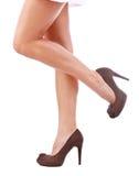 womans ног Стоковое Изображение