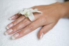 womans орхидеи руки Стоковые Изображения RF