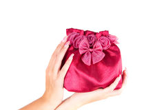 Womans bag Royalty Free Stock Photography