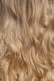Womans blond hair Stock Image
