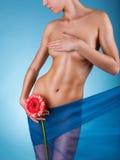 Womans body Stock Photos