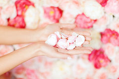 Womans cupped hands with flower petals Royalty Free Stock Images