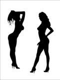 Womans dancing striptease. Stock Photos