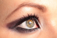 Womans Eye. With Make-Up and Studio Light Reflection Royalty Free Stock Images
