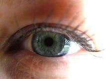 Womans eye Stock Photography