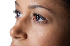 Womans eye and nose against white background stock photography
