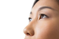 Womans eye and nose against white background stock photos