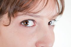 Womans eyes. Women's expressive sexy eyes very close up Royalty Free Stock Photography