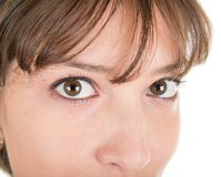 Womans eyes. Women's expressive sexy eyes very close up Royalty Free Stock Images