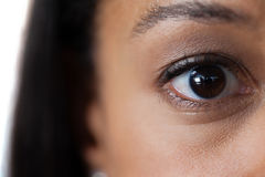 Womans eyes with eyebrows royalty free stock photography