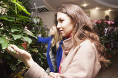 Womans in a flower shop Stock Photography