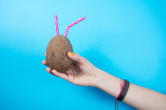 Womans hand holding a coconut against blue background Royalty Free Stock Photography