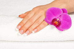 Womans hand with perfect french manicure. Beautiful womans hand with perfect french manicure on white towel near orchid flower stock images