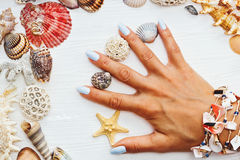Womans hand with shells and starfish on table stock photography