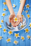 Spa Flowers Water Hands Treatment. A womans hands holding a single frangipani flower above a glass bowl filled with water on a blue painted background and many Royalty Free Stock Images