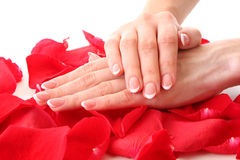 womans hands with manicure Royalty Free Stock Photos