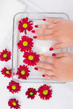 Womans hands after a manicure and polish Royalty Free Stock Images