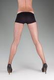 Womans legs Stock Image