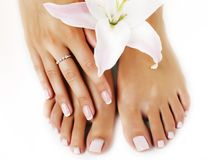 Womans manicure pedicure with flower lily close up isolated on w. Hite background royalty free stock images