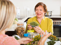 Womans with medicinal herbs Stock Photo