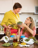 Womans with medicinal herbs Stock Image