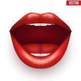 Womans mouth with open lips. Royalty Free Stock Photos
