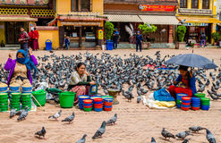 Womans sells food for pigeons around the stupa Boudhnath. Royalty Free Stock Photography