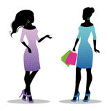 Womans silhouette with bags Royalty Free Stock Photos
