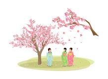 Womans wearing a kimono and sakura Royalty Free Stock Images