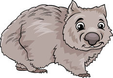 Wombat animal cartoon illustration Royalty Free Stock Images