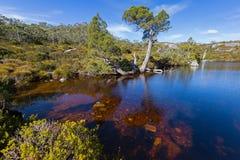 Wombat basen, Kołysankowa góra przy jeziora St Clair parkiem narodowym w T Obraz Royalty Free