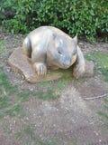 Wombat Daylesford reserve stock photo