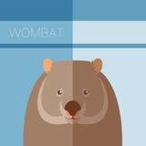 Wombat flat postcard Royalty Free Stock Image
