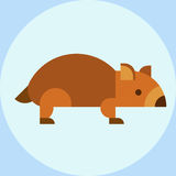 Wombat national park australia herbivore fauna furry outdoors tasmania wildlife australian vector Stock Image