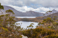 Wombat pool and Dove Lake in Cradle Mountain National Park, Tasm Stock Photo
